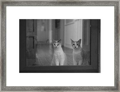 Framed Print featuring the photograph Left Behind by Rdr Creative