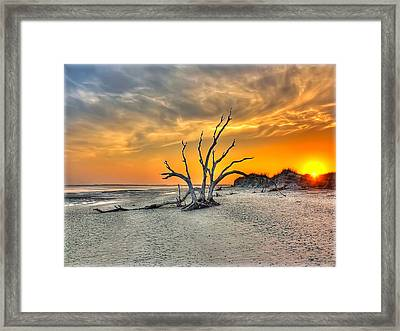 Left Standing Framed Print by Jenny Ellen Photography
