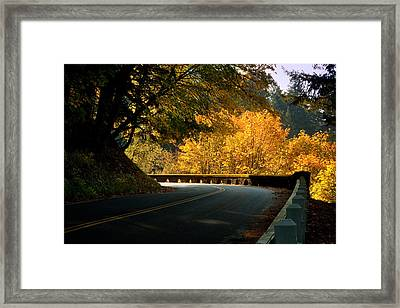 Leisurely Drive Framed Print