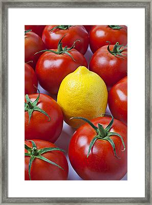Lemon And Tomatoes Framed Print by Garry Gay