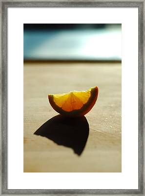 Lemon Shell Framed Print by Luis Esteves