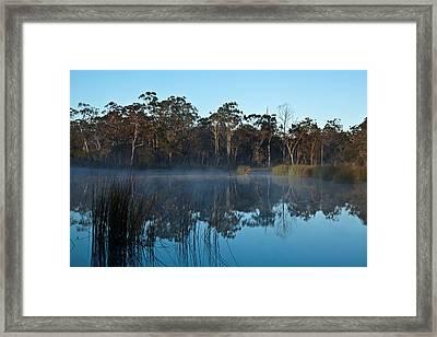 Lenthalls Dam 12 Framed Print by David Barringhaus