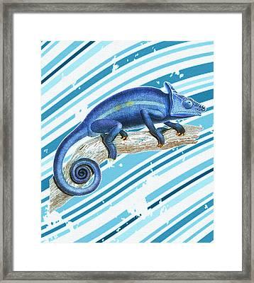 Leo Loves Lizards Framed Print