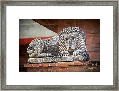 Leo On A Wall Framed Print by Susan Isakson