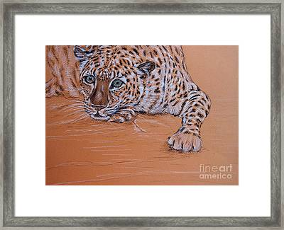 Framed Print featuring the pastel Leopard 1 by Amanda Dinan
