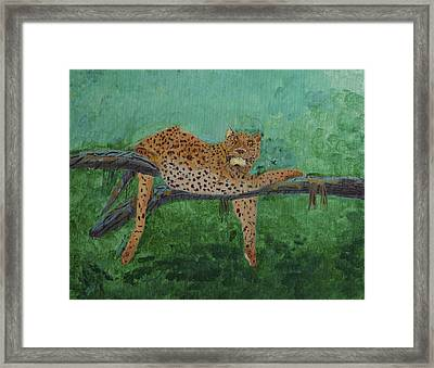 Leopard Laying On A Branch Framed Print