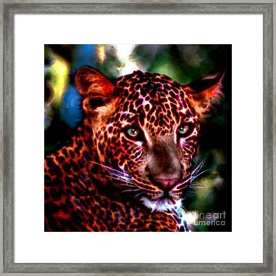 Leopard Portrait Framed Print