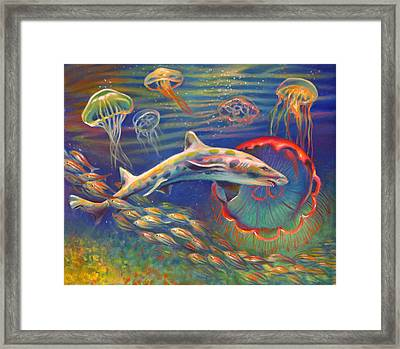 Leopard Shark And Jellyfish Framed Print by Nancy Tilles