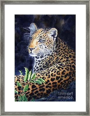 Leopard  Sold  Prints Available Framed Print