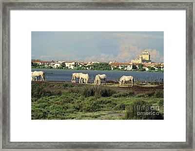 Les Saintes Marie De La Mer. Camargue. Provence. Framed Print by Bernard Jaubert