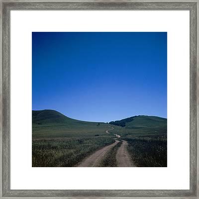 Let Go Framed Print by Winxd