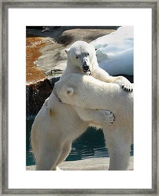 Let Me Whisper In Your Ear Framed Print by Cindy Haggerty