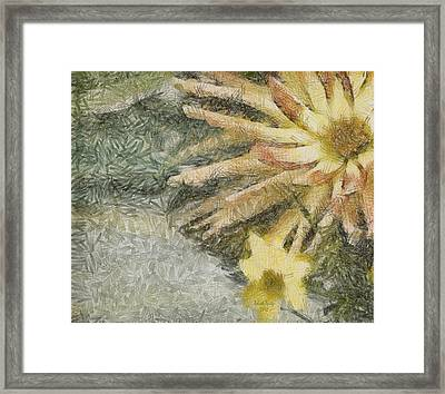Let The Sunshine In Framed Print by Trish Tritz