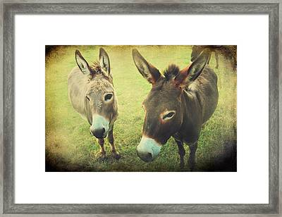Let's Chat Framed Print by Laurie Search