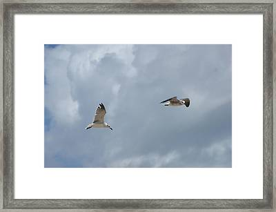 Let's Go Framed Print by Heidi Poulin
