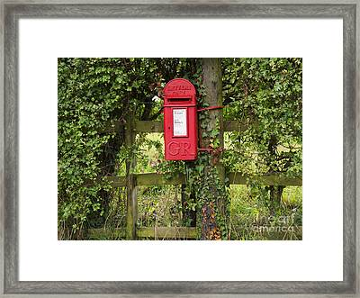 Letterbox In A Hedge Framed Print by Louise Heusinkveld