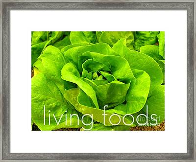 Lettuce Living Raw Foods Framed Print by Sacred  Muse