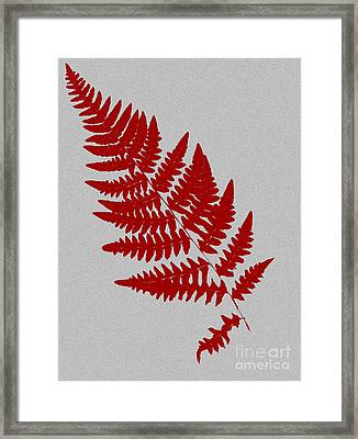 Levere Framed Print by Bruce Stanfield
