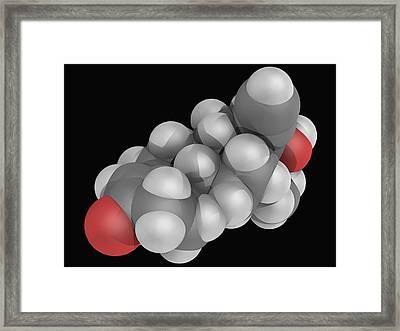 Levonorgestrel Drug Molecule Framed Print by Laguna Design