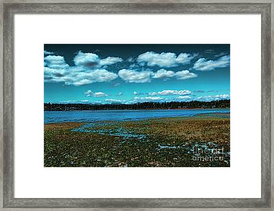 Liberty Bay Seattle Wa Framed Print by RJ Aguilar