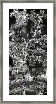 Lichen Like Framed Print by Ron Bissett