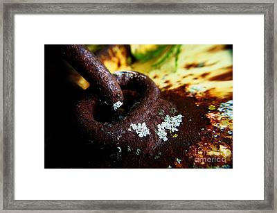 Lichen My Weldin' Framed Print by The Stone Age