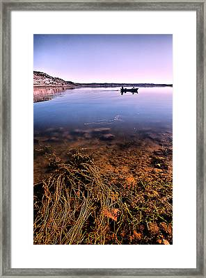 Framed Print featuring the photograph Lichen by Okan YILMAZ