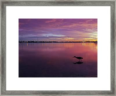 Life After Sunset Framed Print by Melanie Viola