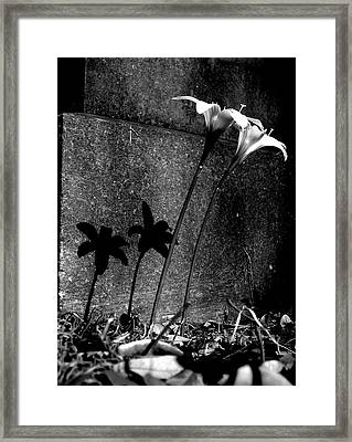 Life And Death Framed Print by Lyn Calahorrano