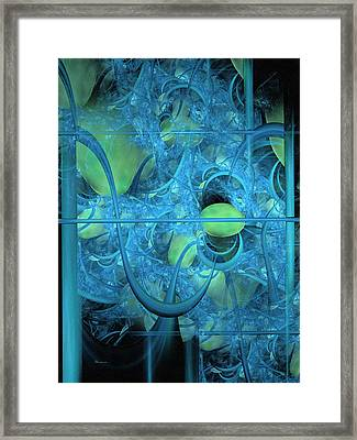 Life Behind The Curtain Framed Print