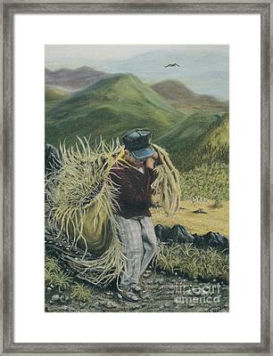 Life In The Fields Framed Print