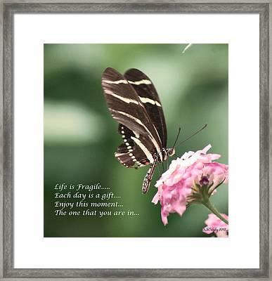 Life Is Fragile Framed Print