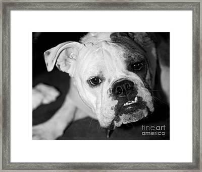 Life Is Rough Framed Print by Leslie Leda