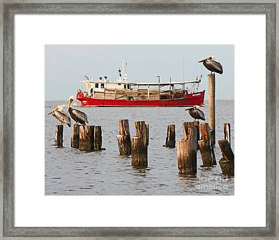 Life On Lake Ponchartrain Framed Print