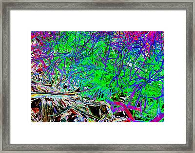 Life On The Coals Framed Print