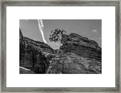 Life On The Edge Framed Print by George Buxbaum