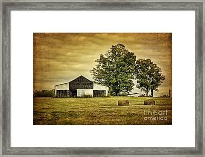 Life On The Farm Framed Print by Cheryl Davis