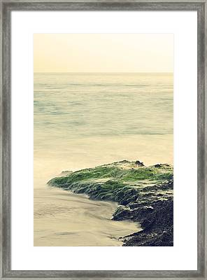 Life On The Rocks Framed Print by Clayton Taylor