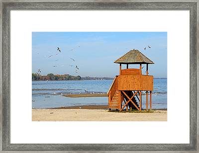 Framed Print featuring the photograph Lifeguard Lookout by Mark J Seefeldt