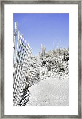 Life's A Beach 3 Framed Print