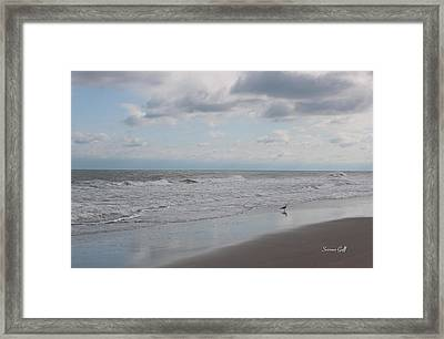 Lifes A Beach Framed Print by Suzanne Gaff