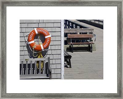 Lifesaver Framed Print by Al Griffin