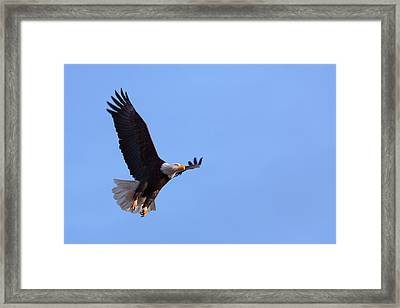 Framed Print featuring the photograph Lift by Jim Garrison