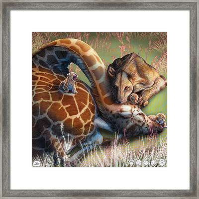Liger  The Shift Framed Print by David Starr
