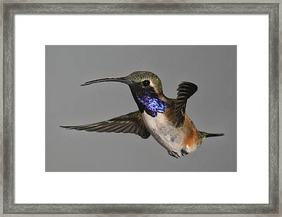 Framed Print featuring the photograph Light Bringer by Gregory Scott