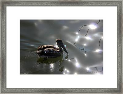Light Dancer 2 Framed Print