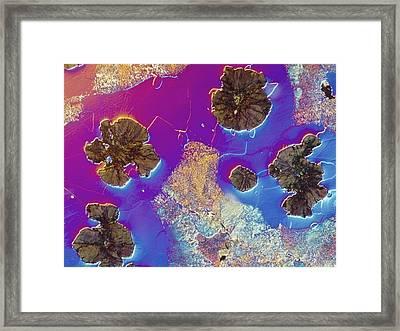 Light Micrograph Of Cast Iron, Dic Framed Print by Pasieka