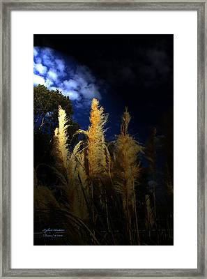 Framed Print featuring the photograph Light Of Hope by Itzhak Richter