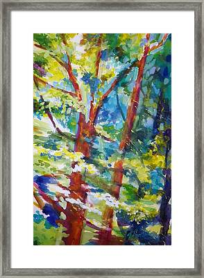 Light Trees And Speed Framed Print