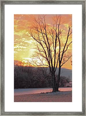 Lighten Up The Sty Framed Print by Mike Flake